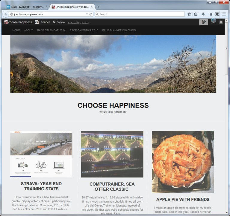choose happiness  wonderful bits of joe - Mozilla Firefox 12292014 103234 PM