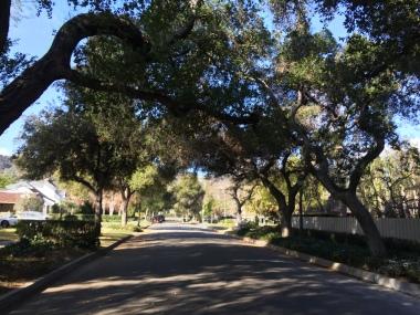 street in Pasadena