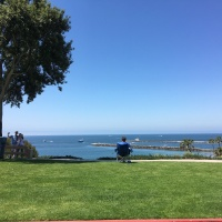 Open Water Swim: Corona del Mar, Newport Beach